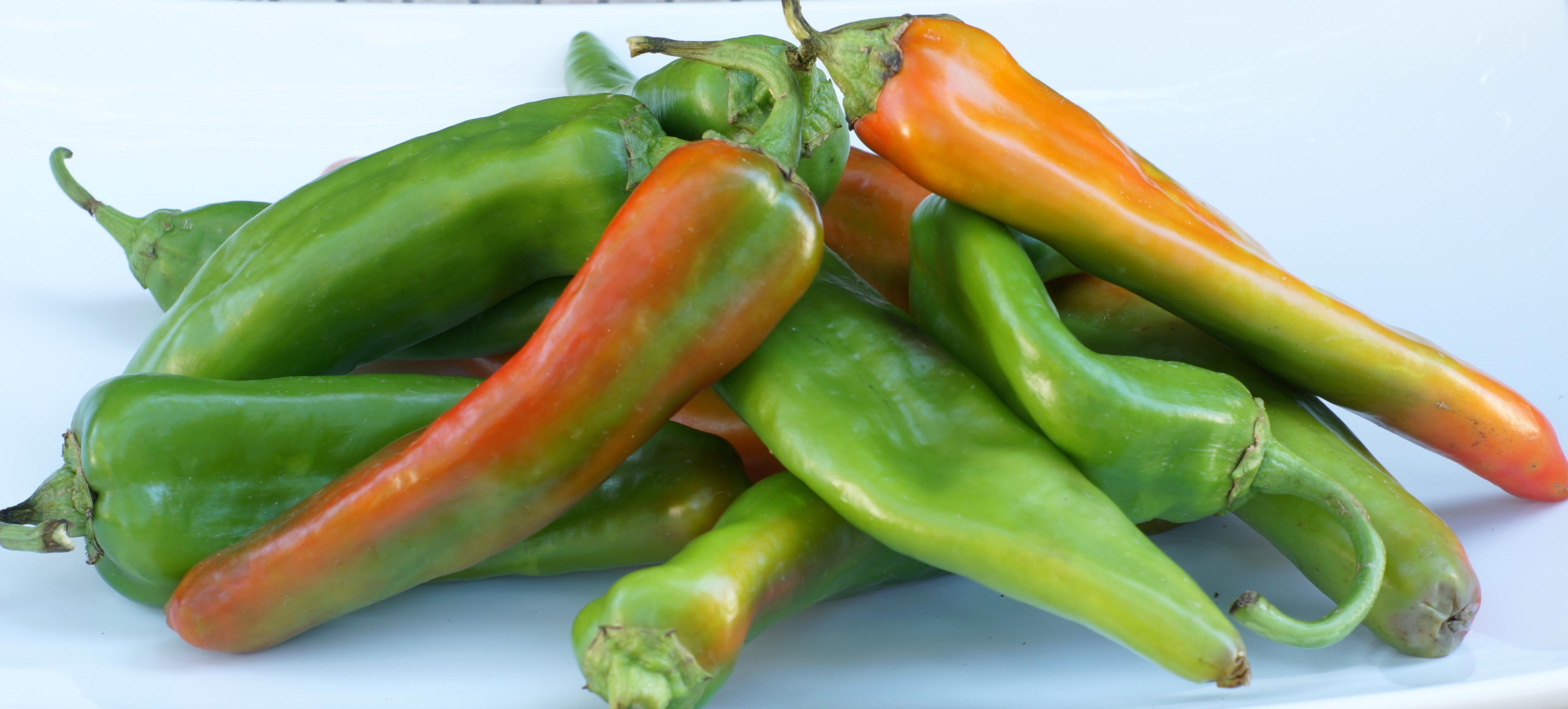 Chile Verde – Colorado Green Chile Stew | Cocina California